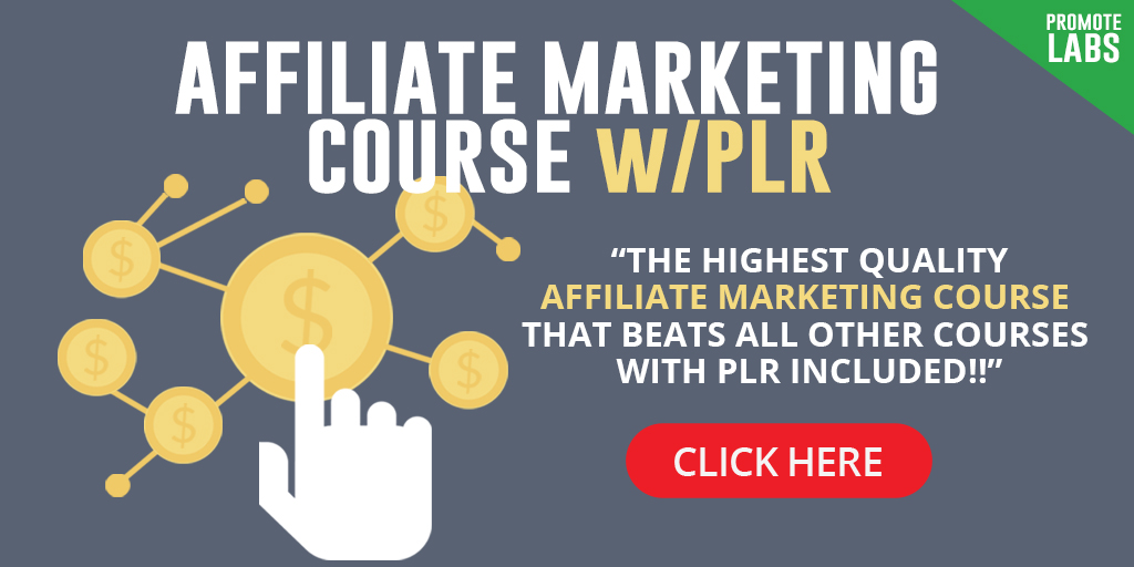 Affiliate Marketing Course with PLR