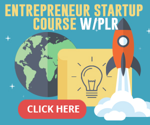 Entrepreneur Course With PLR